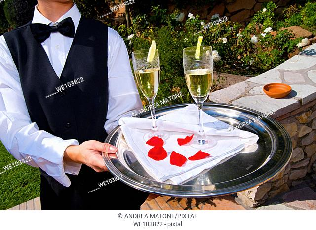 Waiter offering newlyweds chilled drinks