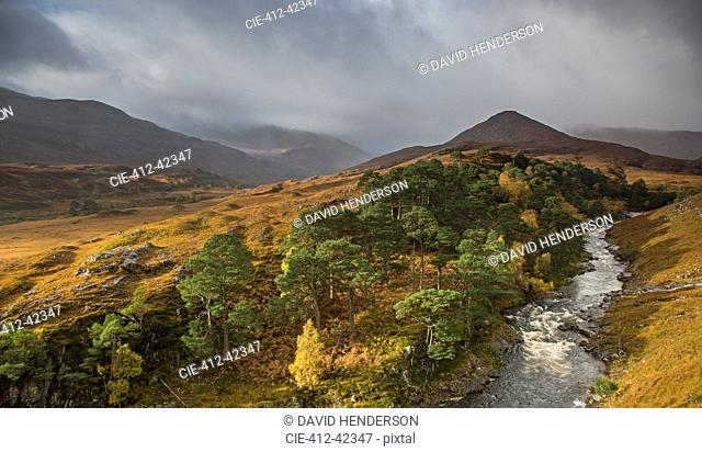 Tranquil glen landscape and river, Glen Strathfarrar, Scotland