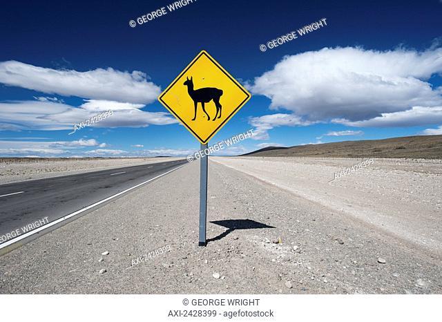 Sign warning of llama sightings along a road; Argentina