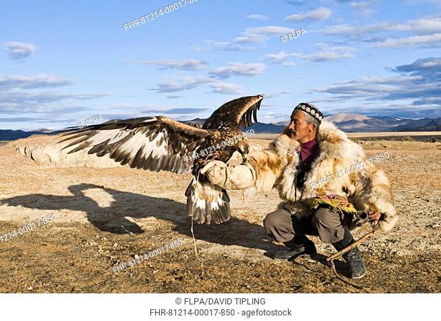 Kazakh hunter with Golden Eagle Aquila chrysaetos, Altai Mountains, Bayan-Ulgii, Western Mongolia, october