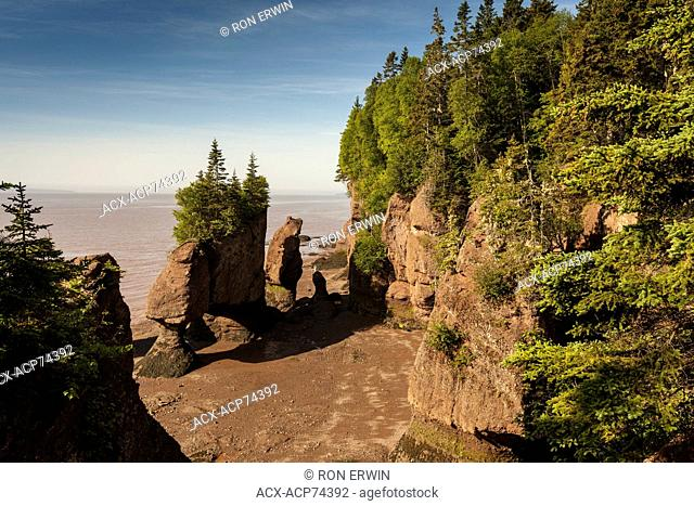 Low-tide at the Hopewell Rocks Provincial Park, New Brunswick, Canada