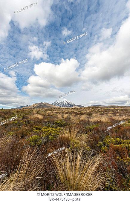 Volcano Mount Tongariro and Mount Ngauruhoe, Tongariro National Park, Southland, New Zealand