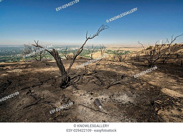 Ridge above Boise Idaho that has been burnet by forest fire