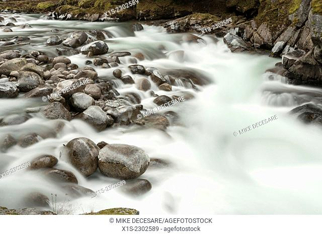 A fast moving river in Western Washington is a blue of white as it winds its way through river rocks and coats boulders with a layer of ice that makes clear...