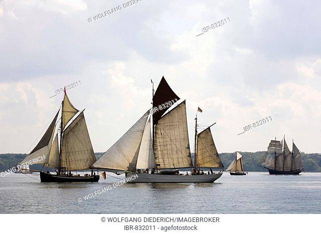 Traditional sailing boats in the Rum regatta 2008, Flenburg fjords, Flensburg, Schleswig-Holstein, Germany, Europe
