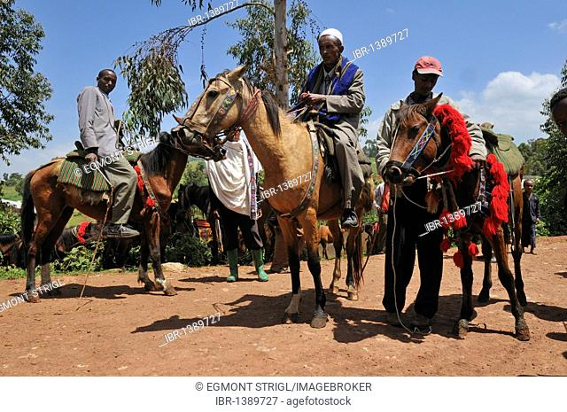 Ethiopian riders, Rift Valley, Oromia, Ethiopia, Africa