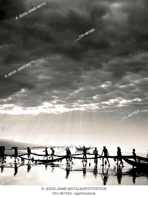 Fishermen pulling out nets. India