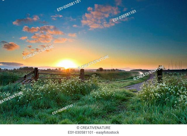 Colorful sunrise over traditional dutch landscape in spring