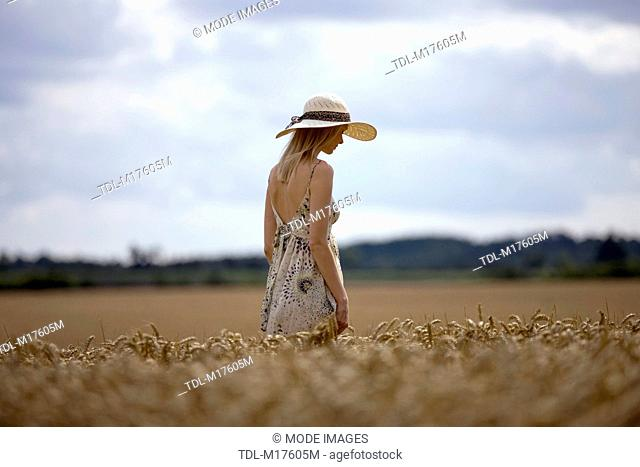 A young woman walking through a wheat field in summertime, looking down