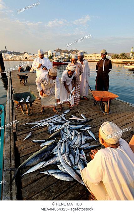 Sultanate of Oman, Muscat, Muttrah corniche, fish market
