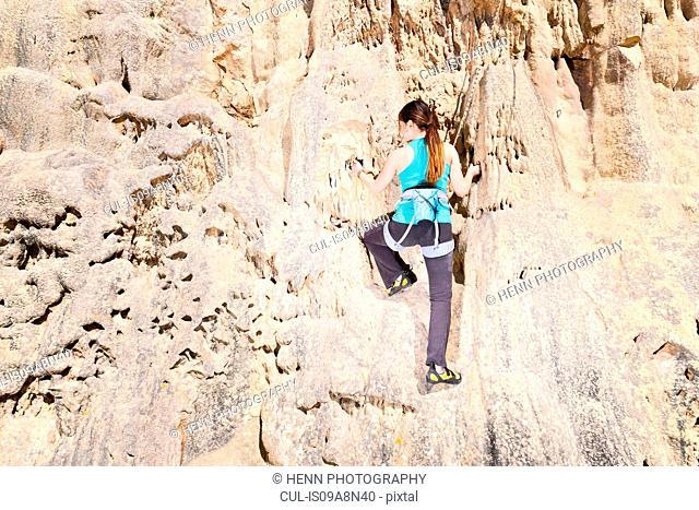 Teenage rock climber on rock face