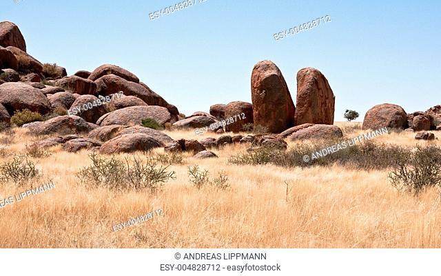 WOLWEDANS - NAMIBIA