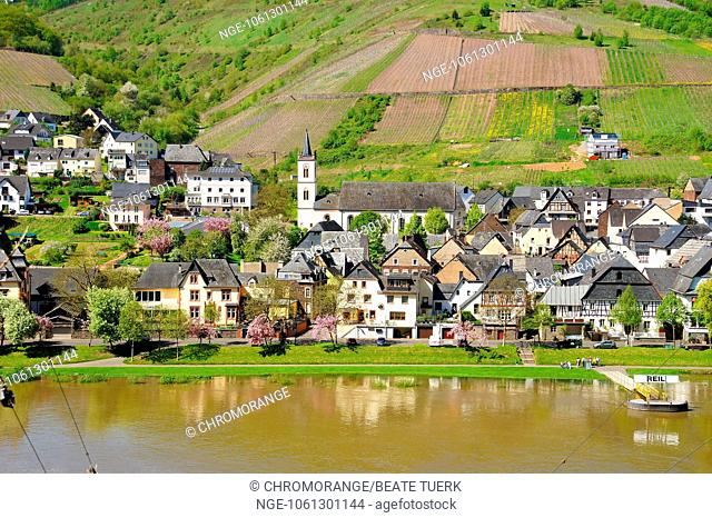 springtime in Reil on the Moselle