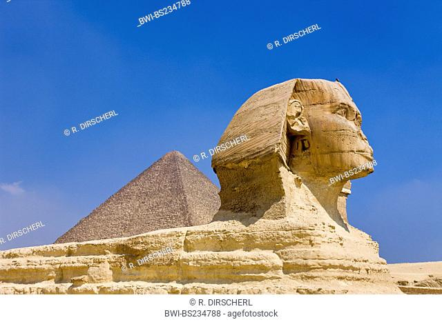 Great Sphinx of Giza against Cheops Pyramid, Cairo, Egypt