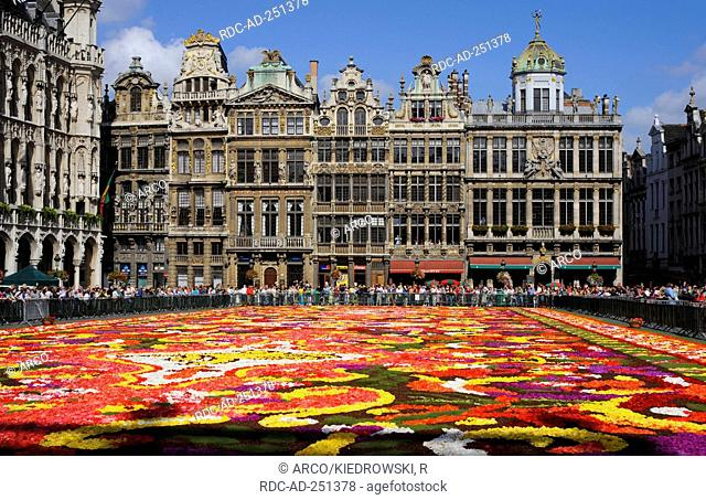 Carpet of flowers on city hall square Guildhalls Grote Markt Brussels Belgium Grand-Place