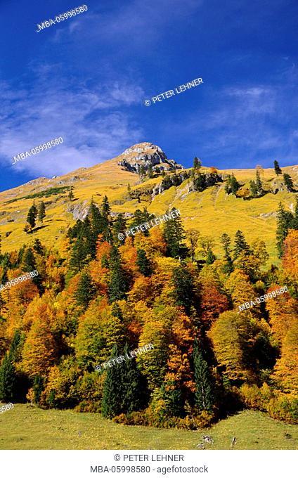Austria, Tyrol, Eng-Alm (alp), autumn