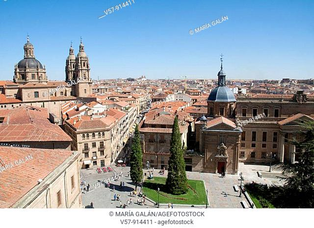 Panoramic view from the terrace of the cathedral. Salamanca, Castilla Leon, Spain
