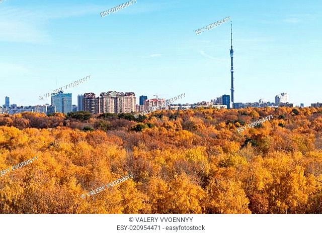 panorama with TV tower and autumn fores