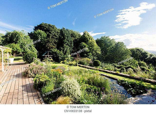 View of sunny summer landscaped garden