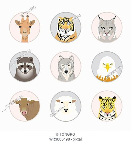 Icons of various animal faces