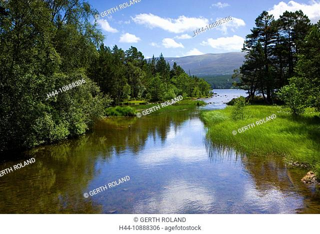 Loch Morlich, Great Britain, Scotland, Europe, sea, wood, forest, trees, lake shores, clouds