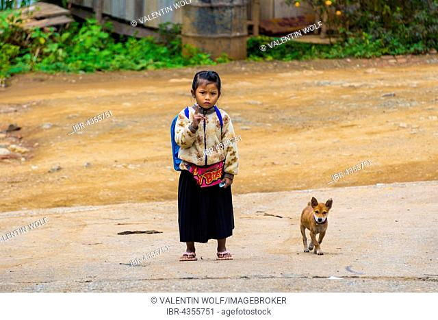Little girl with dog on the street, Luang Prabang, Louangphabang, Laos