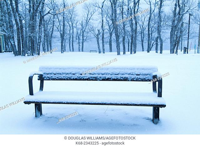 Winter in Waterton Lakes National Park town site, Alberta, Canada