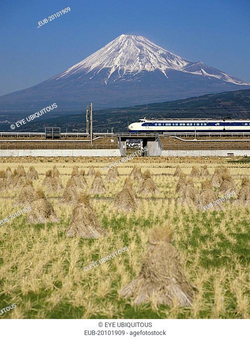 Mount Fuji with Shinkansen bullet train passing through rice fields