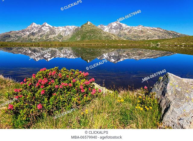 Lepontine alps reflect at Andossi lake, Spluga valley, Lombardy, Italy