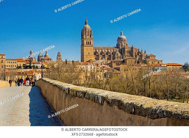 Roman Bridge of Salamanca, Historic Artistic Grouping, Puente Mayor del Tormes, New and Old Cathedral of Salamanca, Salamanca, UNESCO World Heritage Site