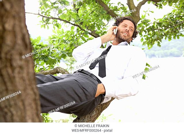 Germany, relaxed businessman lying in tree telephoning