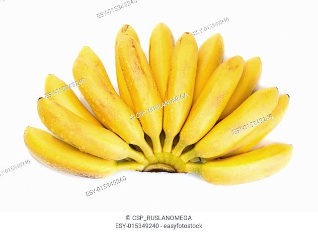 natural small tropical banana in a bunch