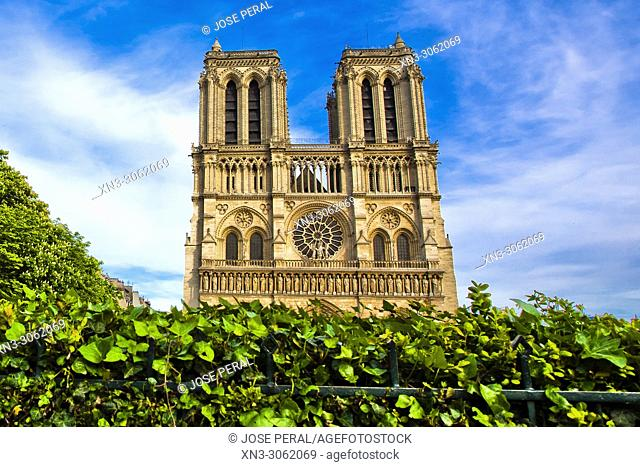 Our Lady of Paris, Notre Dame Cathedral, Île de la Cité, Paris, France, Europe