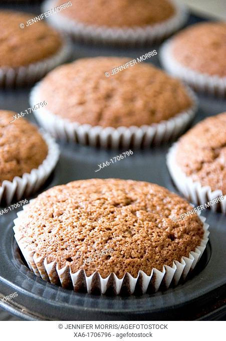 Freshly baked chocolate cupcakes in a baking tin