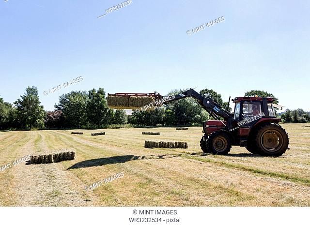 Tractor in a field, lifting stack of hay bales