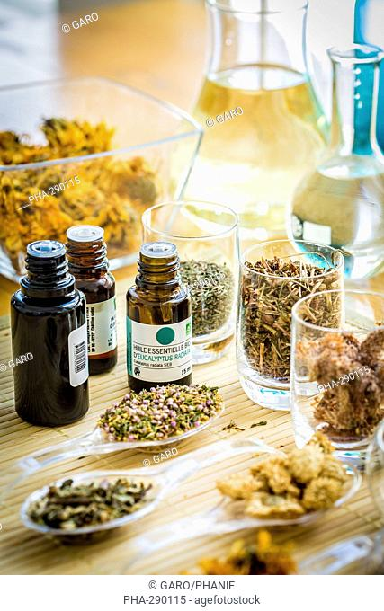 Medicinal herbs, assortment of dried herbs and essentiel oil