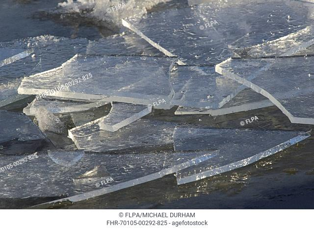 Broken sheets of ice on frozen river, River Nith, Dumfries and Galloway, Scotland, december
