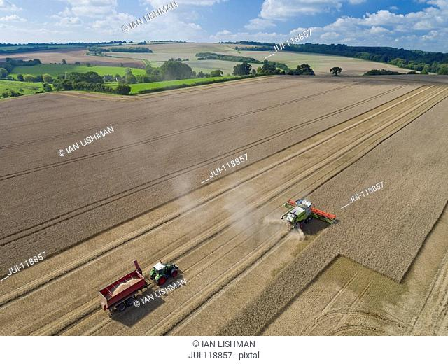 Aerial view of combine harvester harvesting wheat in field