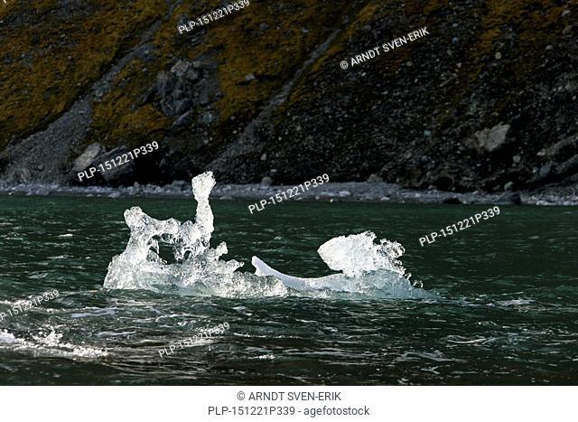 Melting ice floe drifting in Burgerbukta, bay in the north of Hornsund fjord, Svalbard, Spitsbergen, Norway
