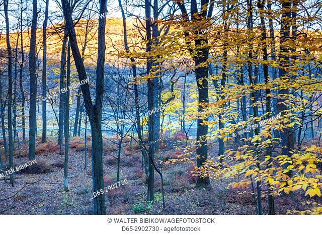 USA, New Jersey, Delaware Water Gap National Recreation Area, autumn along the Delaware River