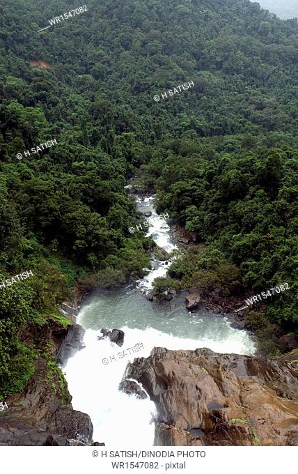 Dudhsagar waterfalls in Goa at maharashtra India Asia