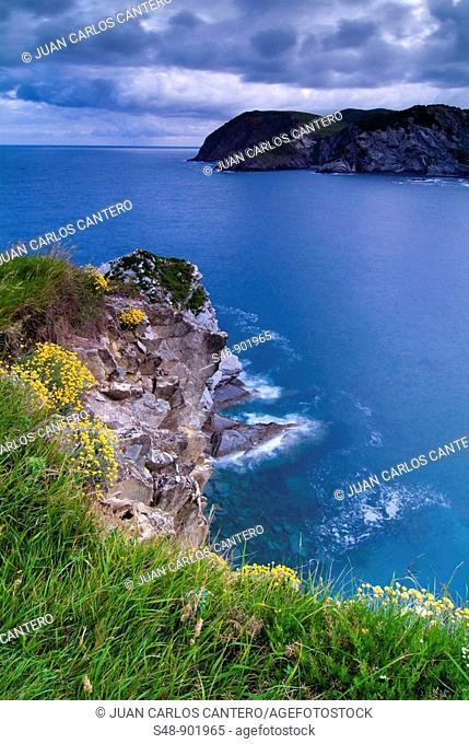 North Bay Cliffs. Barrika. Vizcaya. Basque Country. Spain