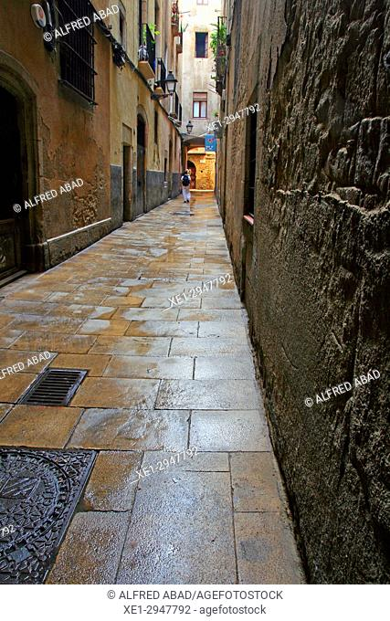 street, gothic quarter, Barcelona, Catalonia, Spain
