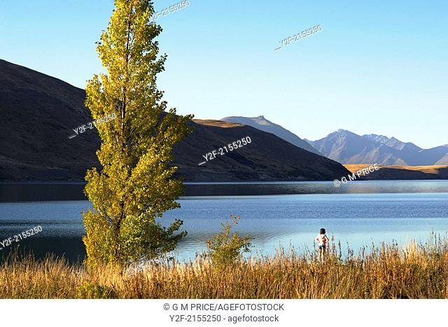woman standing and looking out at calm waters of Lake Tekapo at dusk