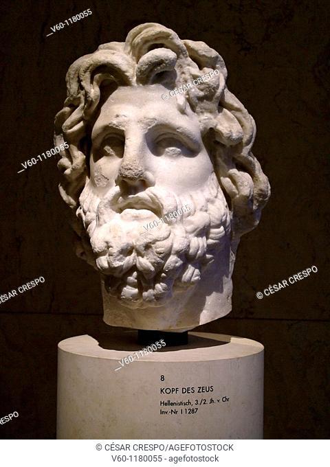 -Head of Zeus- Wien (Austria)