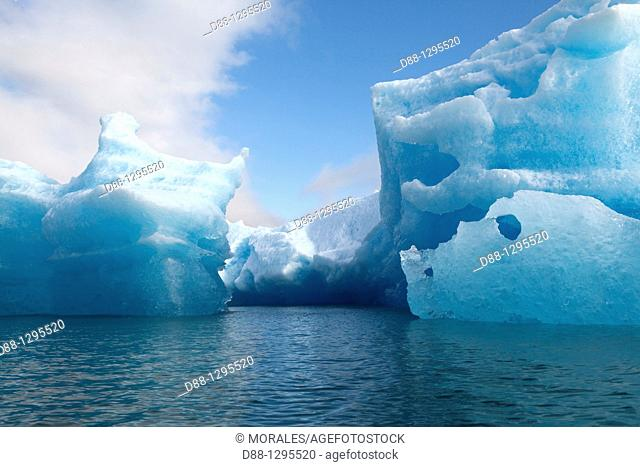 Alaska , Fords Terror Wilderness Area near Juneau, , Tracy Arm , iceberg , Piece of ice