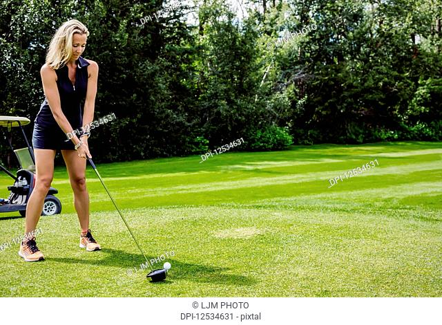 A female golfer lines up her driver to the golf ball as she sets up her shot on a tee; Edmonton, Alberta, Canada