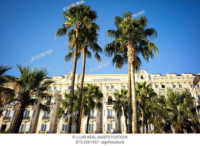 Main facade with palm trees in the foreground of the Carlton Intercontinental Hotel in Cannes, Costa Azul, Provence, France
