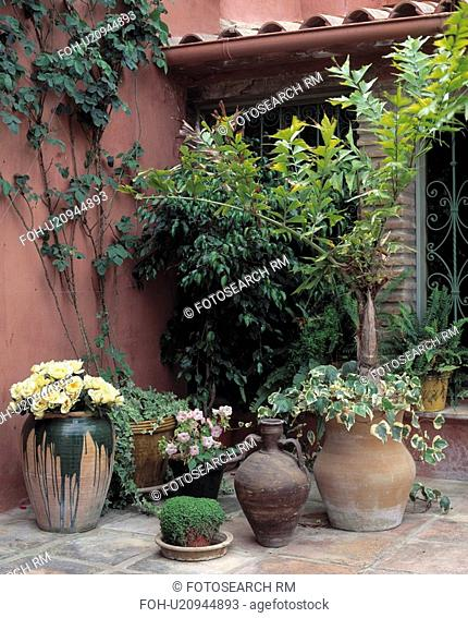 Corner of a courtyard with containers with ferns, ivyand begonias