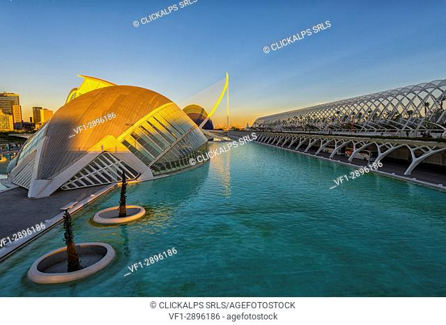 Spain, Valencia, City of Art And Science (Calatrava)